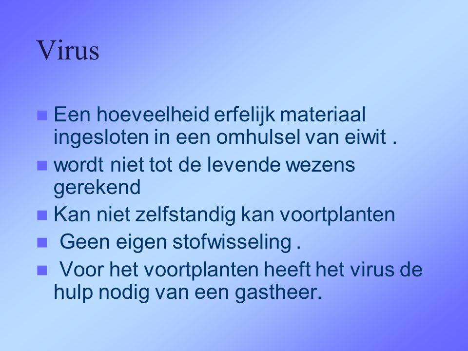 Virus Een hoeveelheid erfelijk materiaal ingesloten in een omhulsel van eiwit . wordt niet tot de levende wezens gerekend.