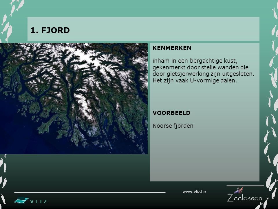 1. FJORD KENMERKEN.