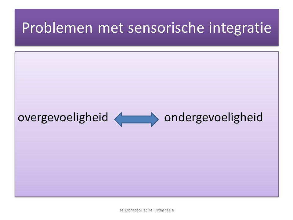 Problemen met sensorische integratie