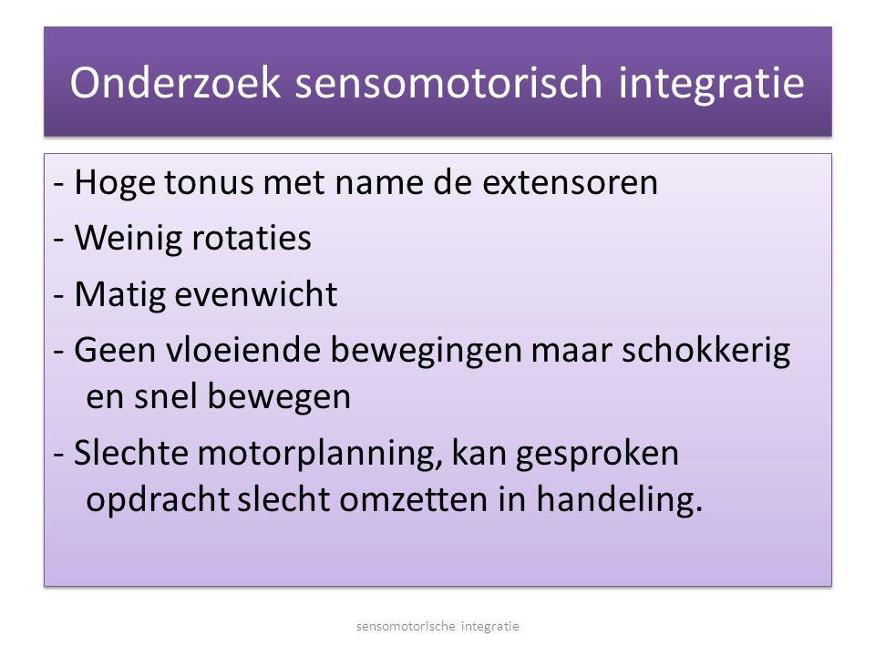 Onderzoek sensomotorisch integratie