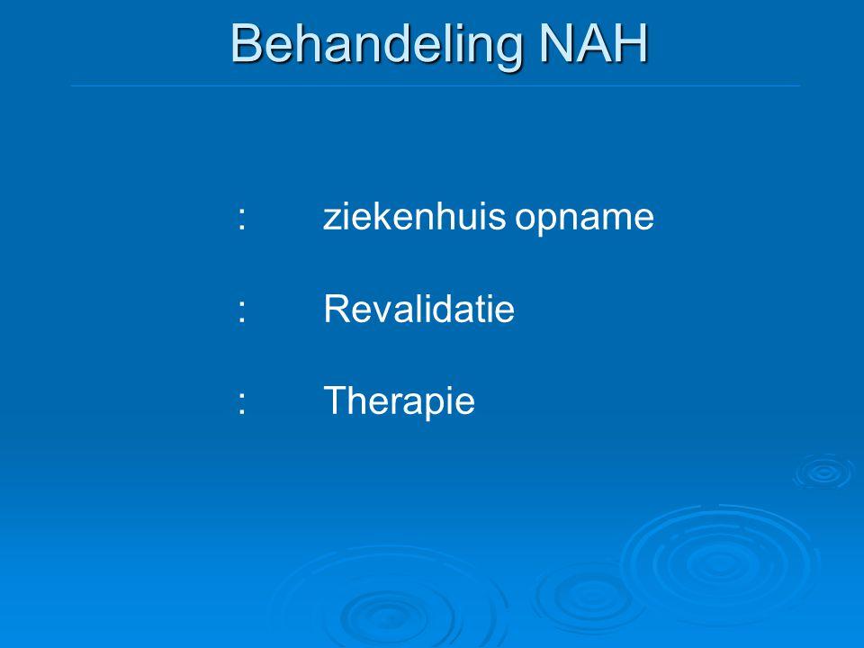 Behandeling NAH : ziekenhuis opname : Revalidatie : Therapie