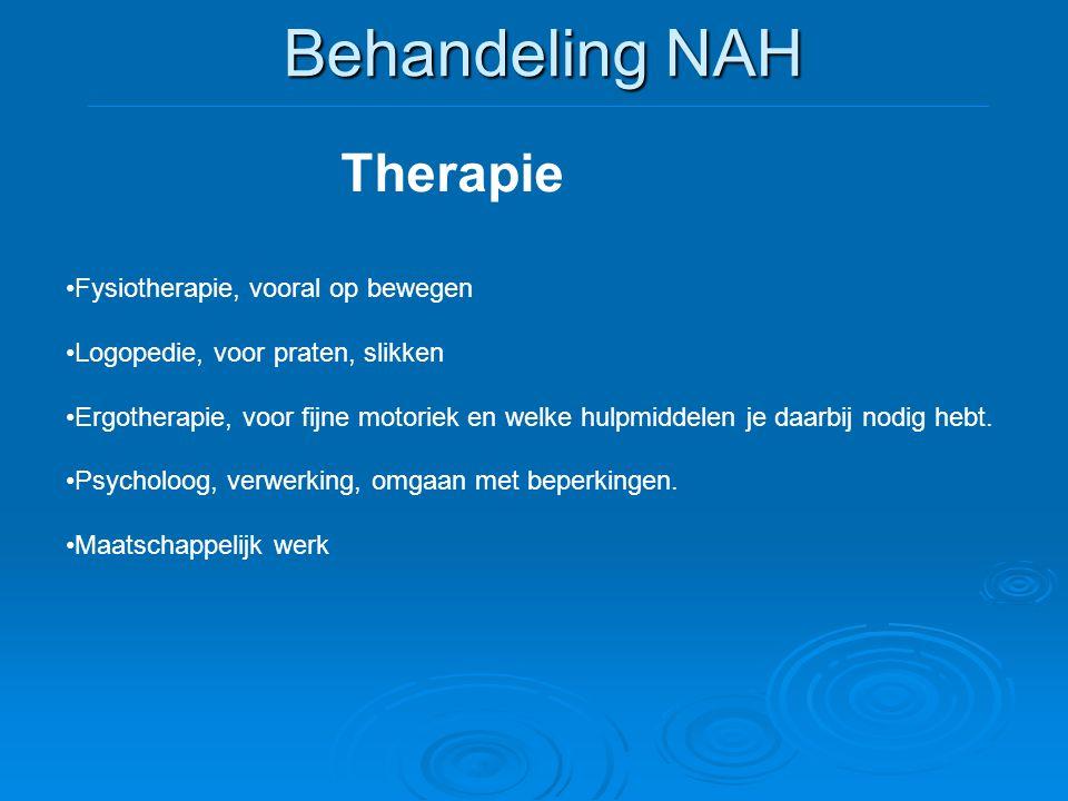 Behandeling NAH Therapie Fysiotherapie, vooral op bewegen