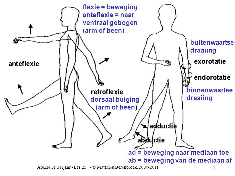 4 functies van het skelet