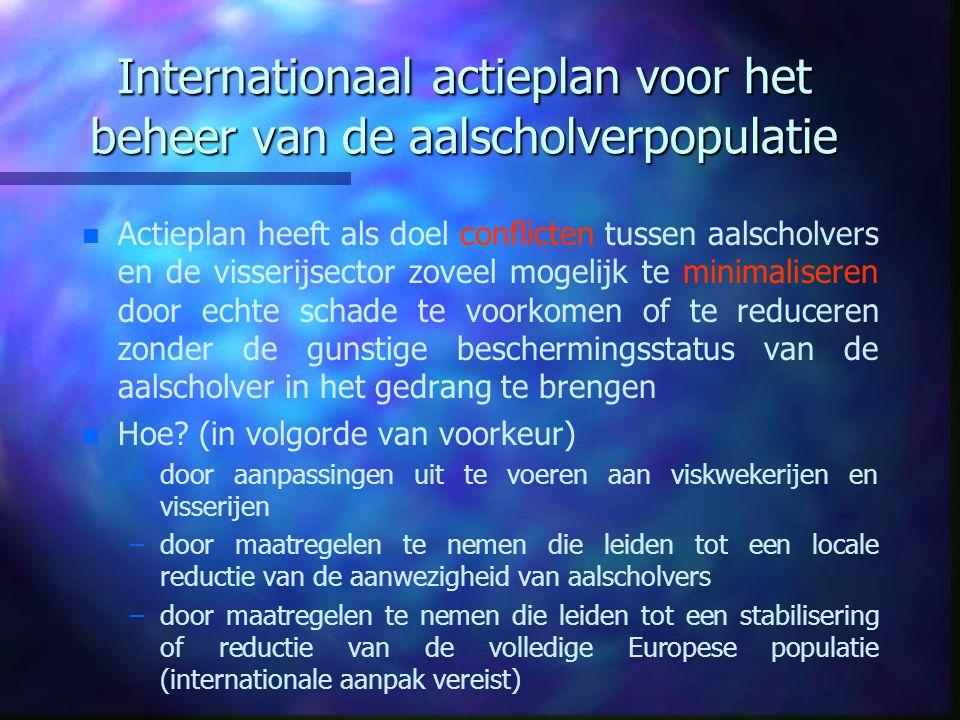 Internationaal actieplan voor het beheer van de aalscholverpopulatie