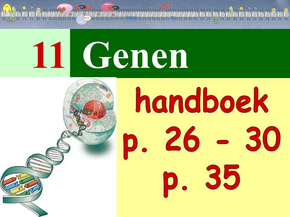 11 Genen handboek p. 26 - 30 p. 35