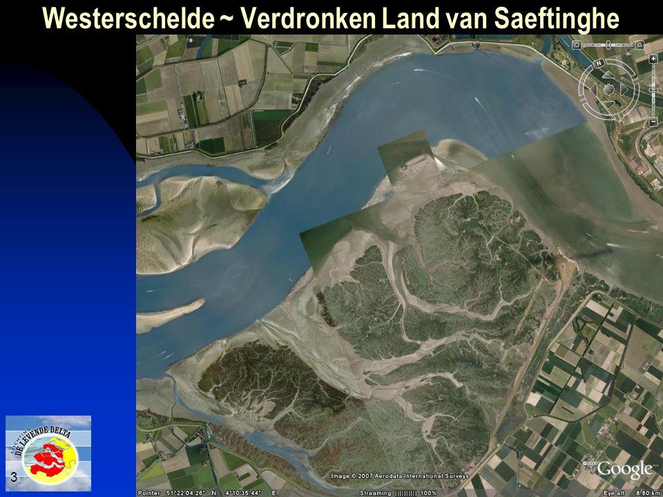 Westerschelde ~ Verdronken Land van Saeftinghe