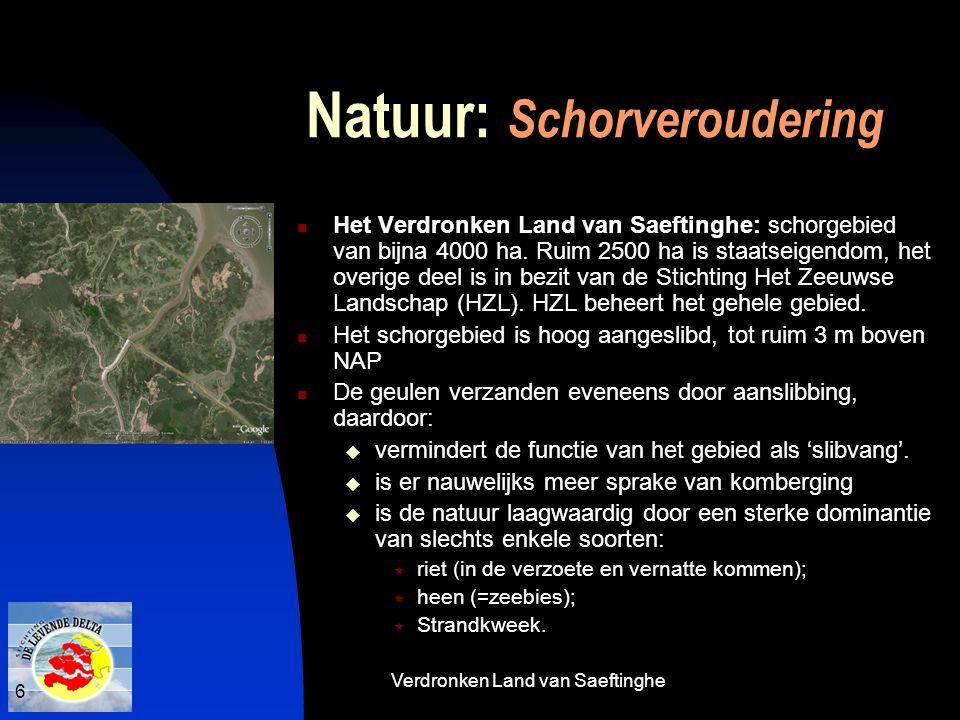 Natuur: Schorveroudering