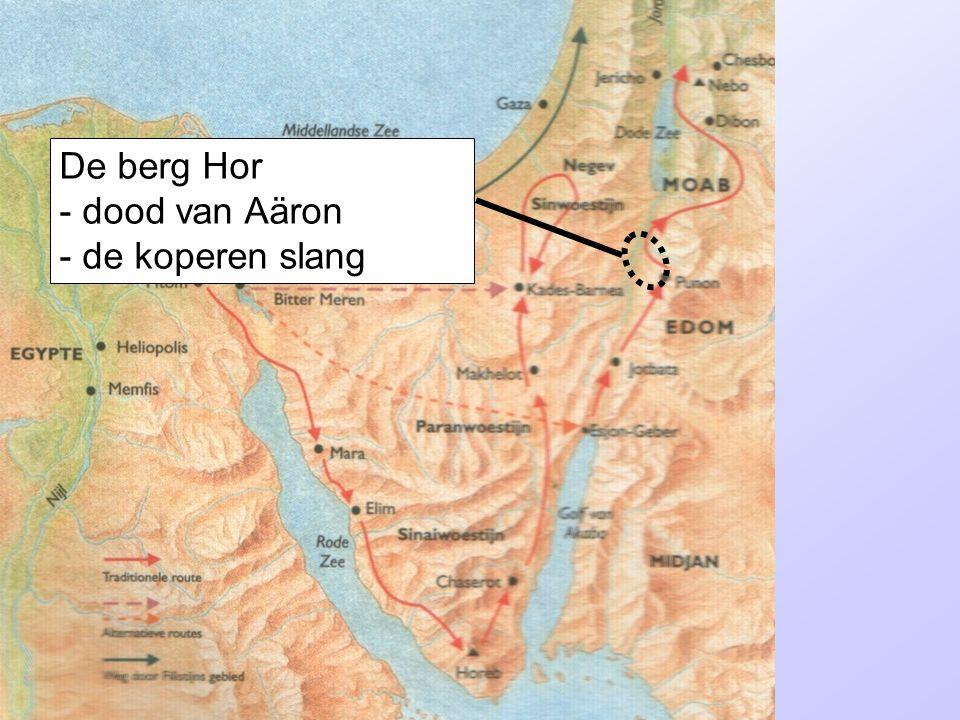 De berg Hor - dood van Aäron - de koperen slang