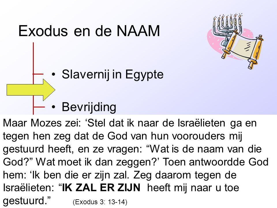 Exodus en de NAAM Slavernij in Egypte Bevrijding