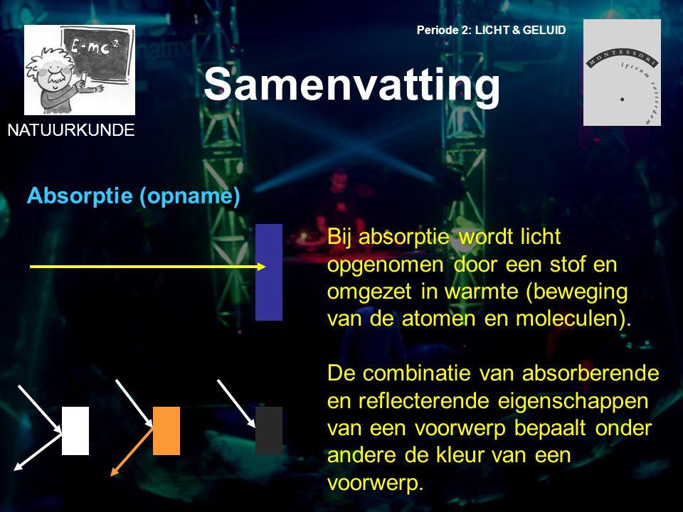 Samenvatting Absorptie (opname)