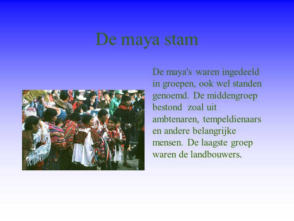De maya stam