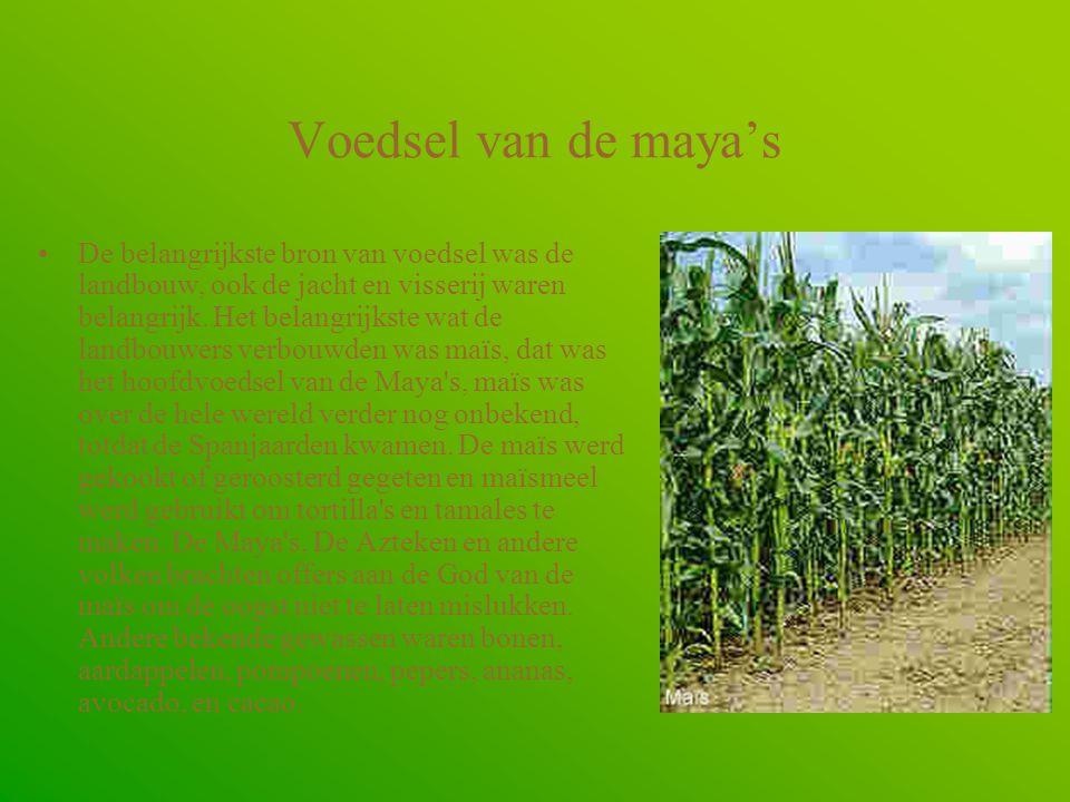 Voedsel van de maya's