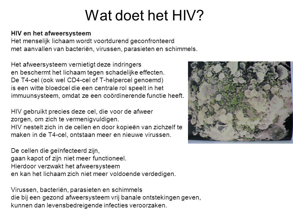 Wat doet het HIV HIV en het afweersysteem