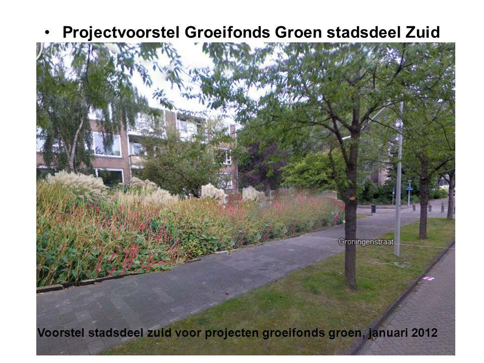 Projectvoorstel Groeifonds Groen stadsdeel Zuid