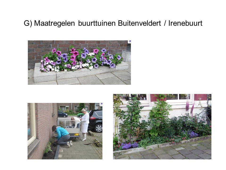 G) Maatregelen buurttuinen Buitenveldert / Irenebuurt