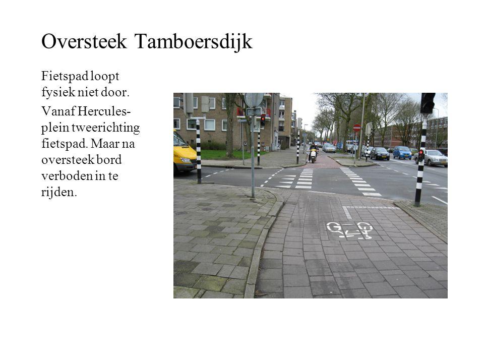 Oversteek Tamboersdijk