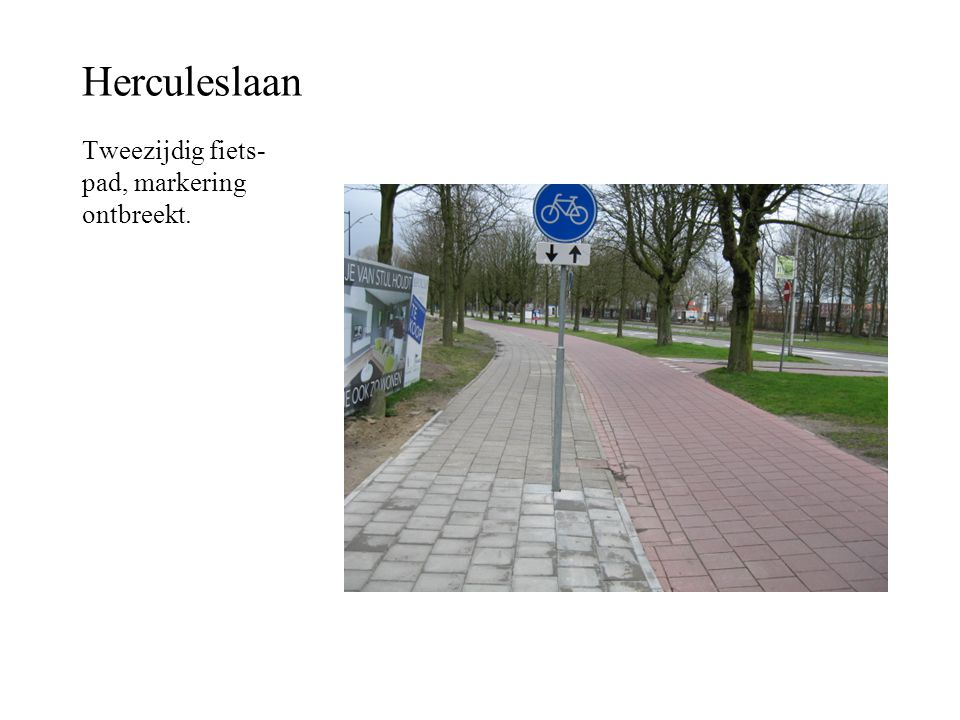 Herculeslaan Tweezijdig fiets-pad, markering ontbreekt.