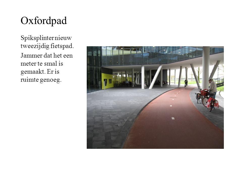 Oxfordpad Spiksplinter nieuw tweezijdig fietspad.