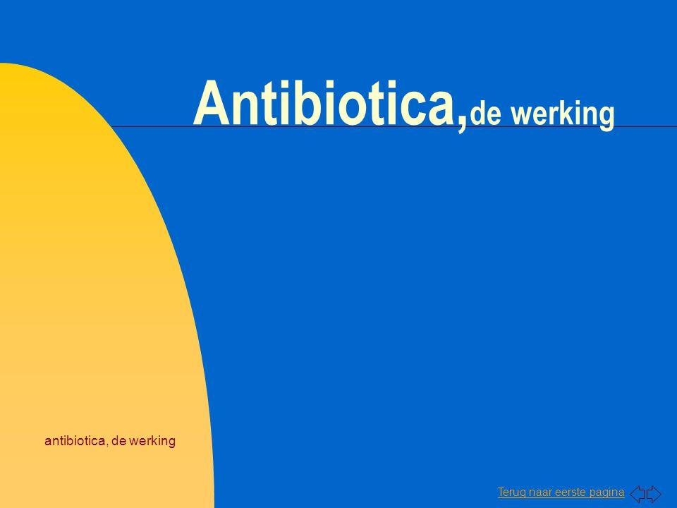 Antibiotica,de werking
