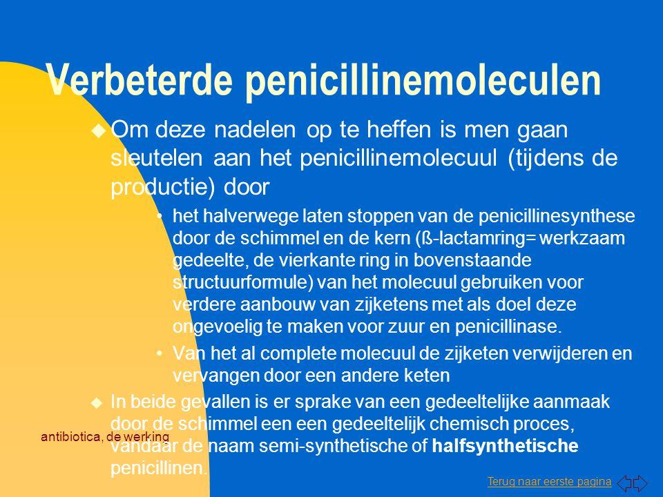 Verbeterde penicillinemoleculen