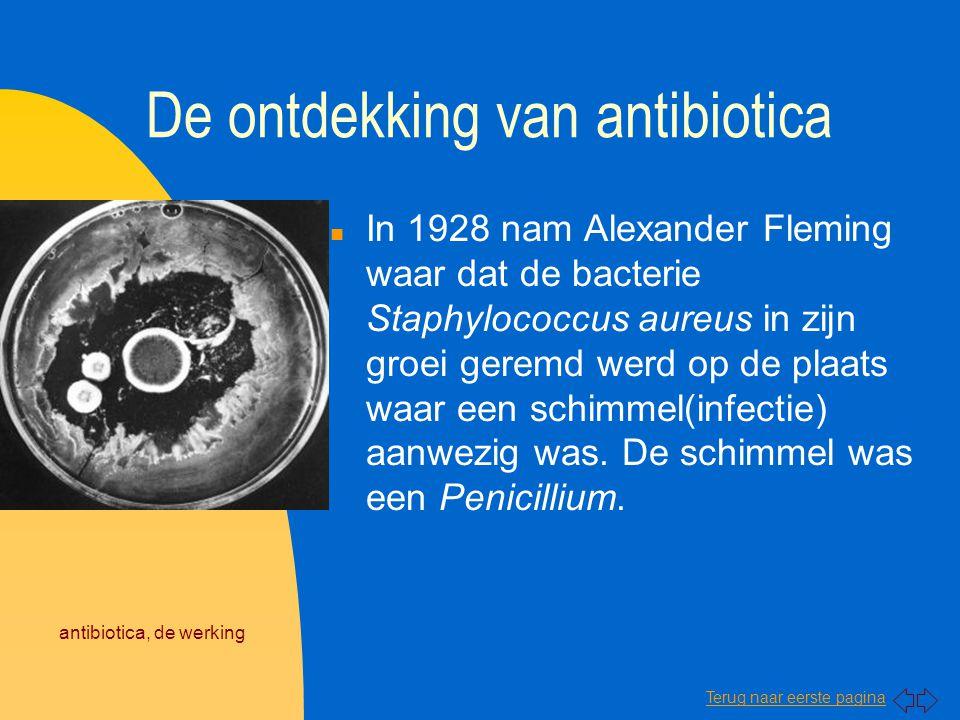 De ontdekking van antibiotica