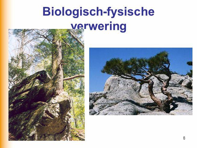 Biologisch-fysische verwering