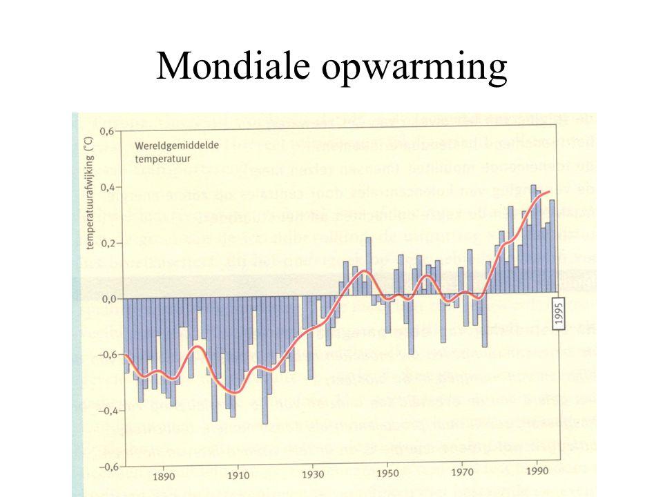 Mondiale opwarming