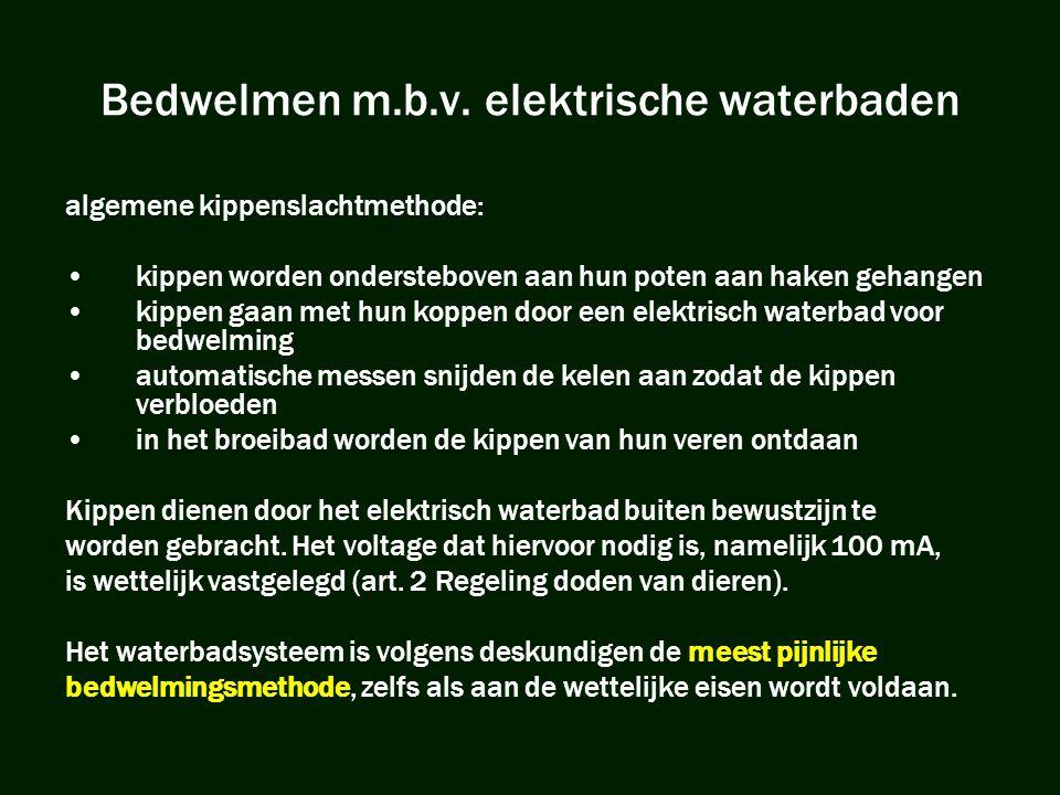 Bedwelmen m.b.v. elektrische waterbaden
