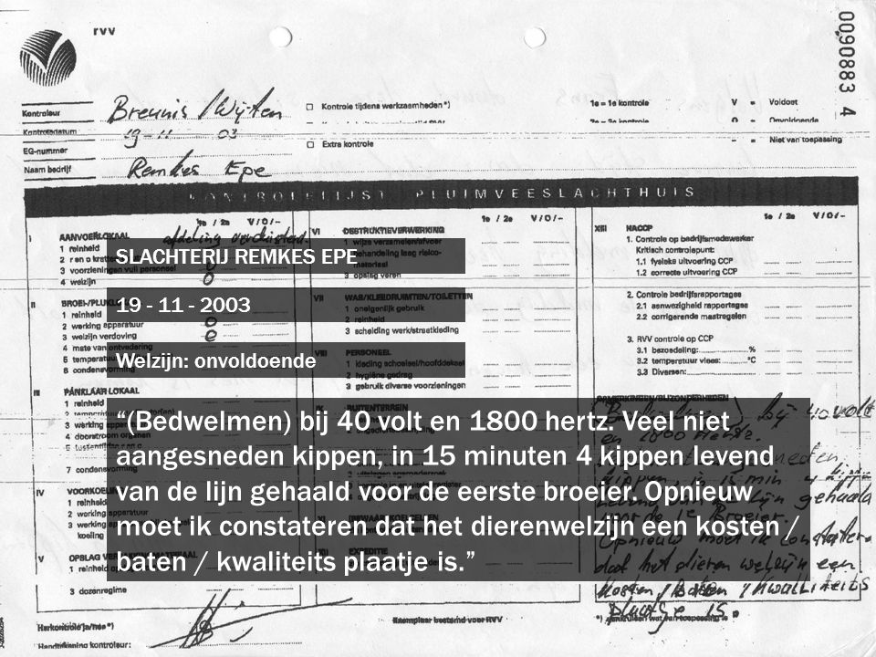 SLACHTERIJ REMKES EPE 19 - 11 - 2003. Welzijn: onvoldoende.