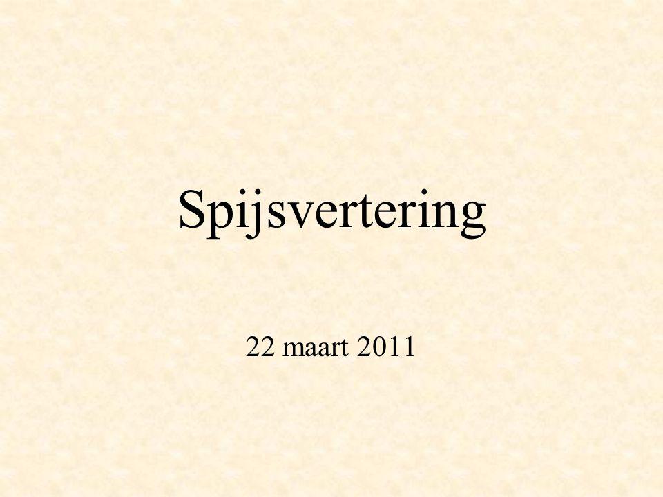 Spijsvertering 22 maart 2011