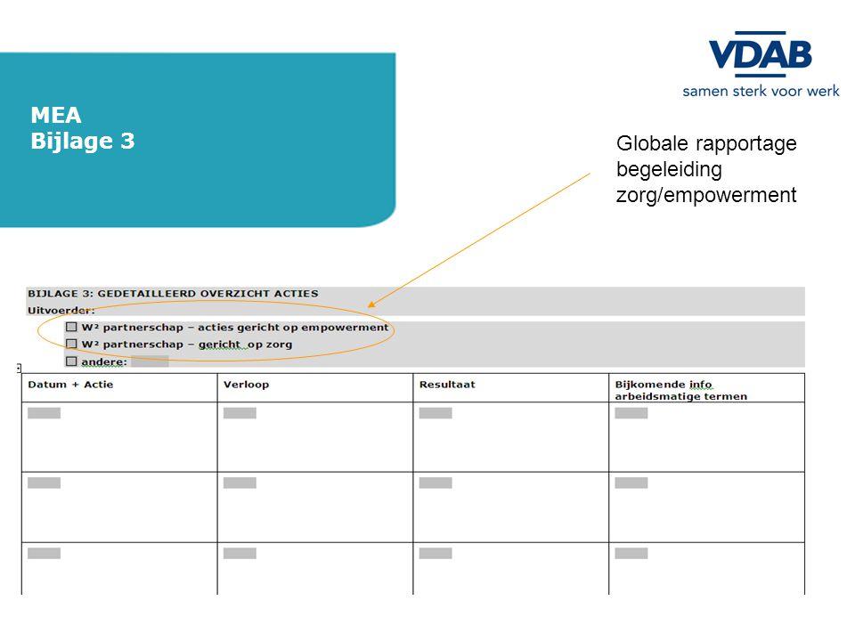 MEA Bijlage 3 Globale rapportage begeleiding zorg/empowerment