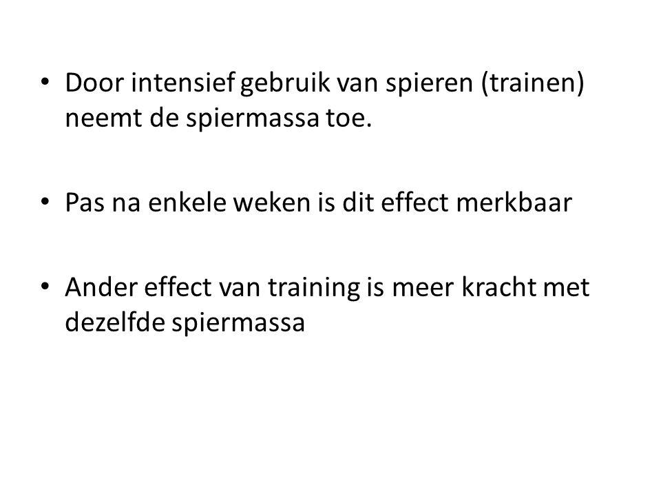 Door intensief gebruik van spieren (trainen) neemt de spiermassa toe.