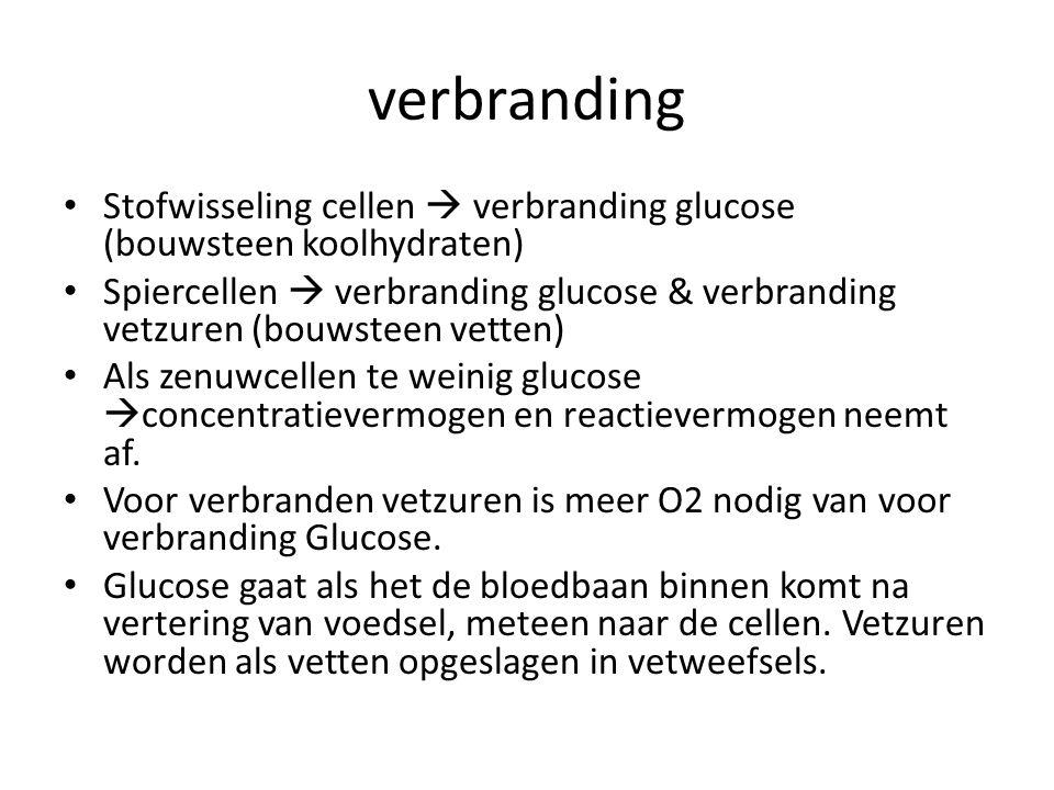 verbranding Stofwisseling cellen  verbranding glucose (bouwsteen koolhydraten)