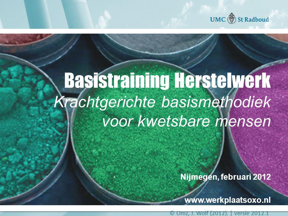 Basistraining Herstelwerk Krachtgerichte basismethodiek voor kwetsbare mensen