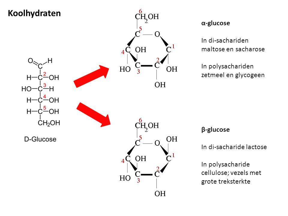 Koolhydraten α-glucose In di-sachariden maltose en sacharose