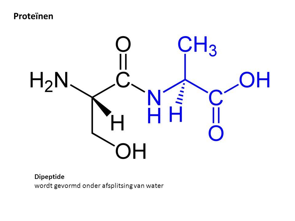 Proteïnen Dipeptide wordt gevormd onder afsplitsing van water