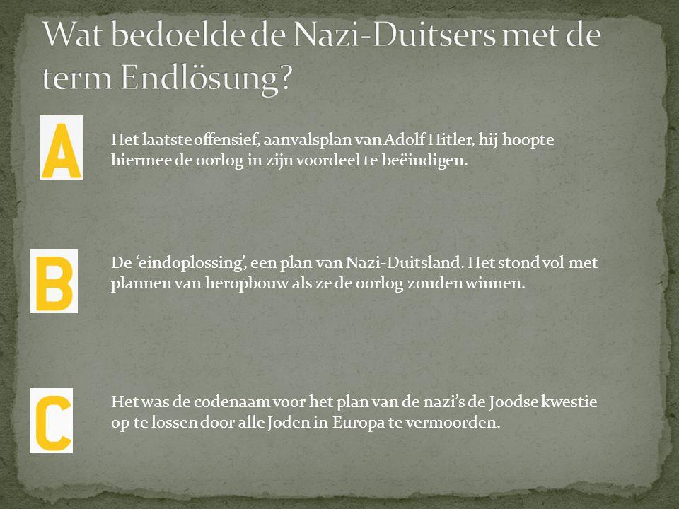 Wat bedoelde de Nazi-Duitsers met de term Endlösung