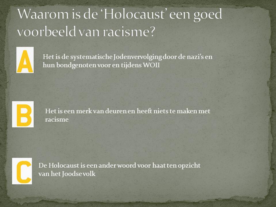 Waarom is de 'Holocaust' een goed voorbeeld van racisme