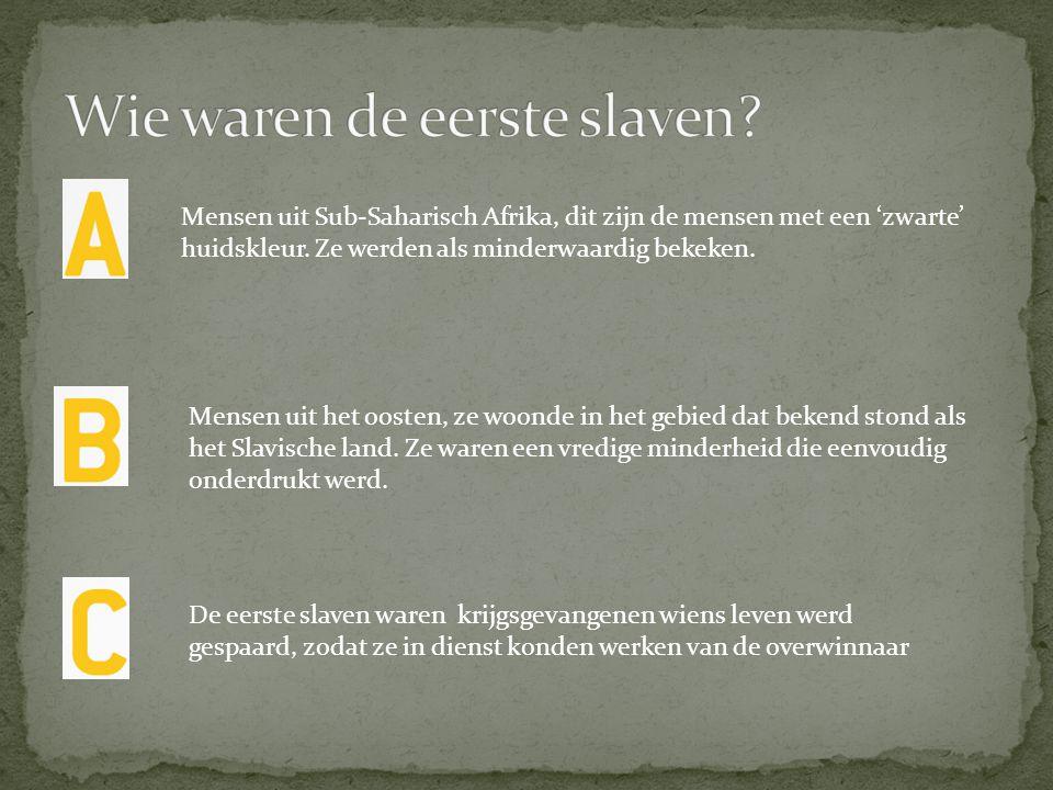 Wie waren de eerste slaven