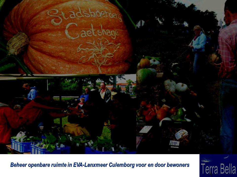 Beheer openbare ruimte in EVA-Lanxmeer Culemborg voor en door bewoners