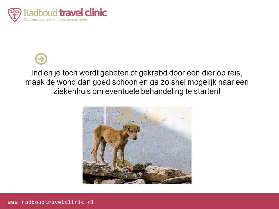 Indien je toch wordt gebeten of gekrabd door een dier op reis, maak de wond dan goed schoon en ga zo snel mogelijk naar een ziekenhuis om eventuele behandeling te starten!