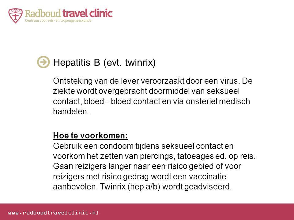 Hepatitis B (evt. twinrix)