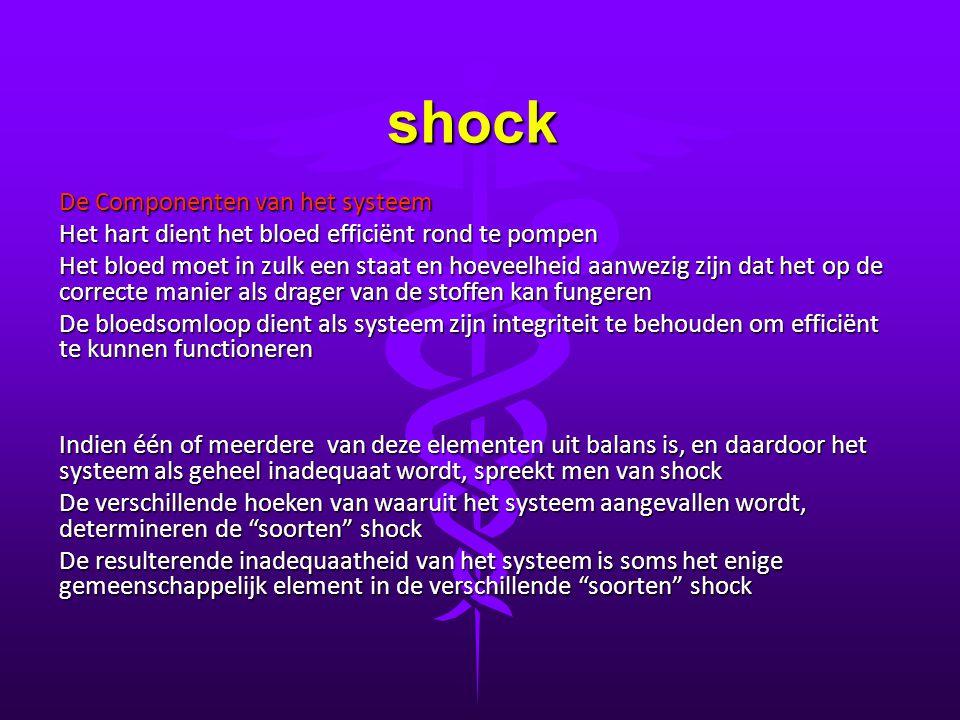 shock De Componenten van het systeem