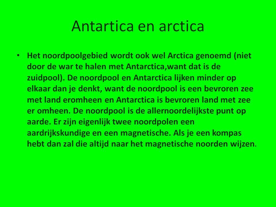 Antartica en arctica