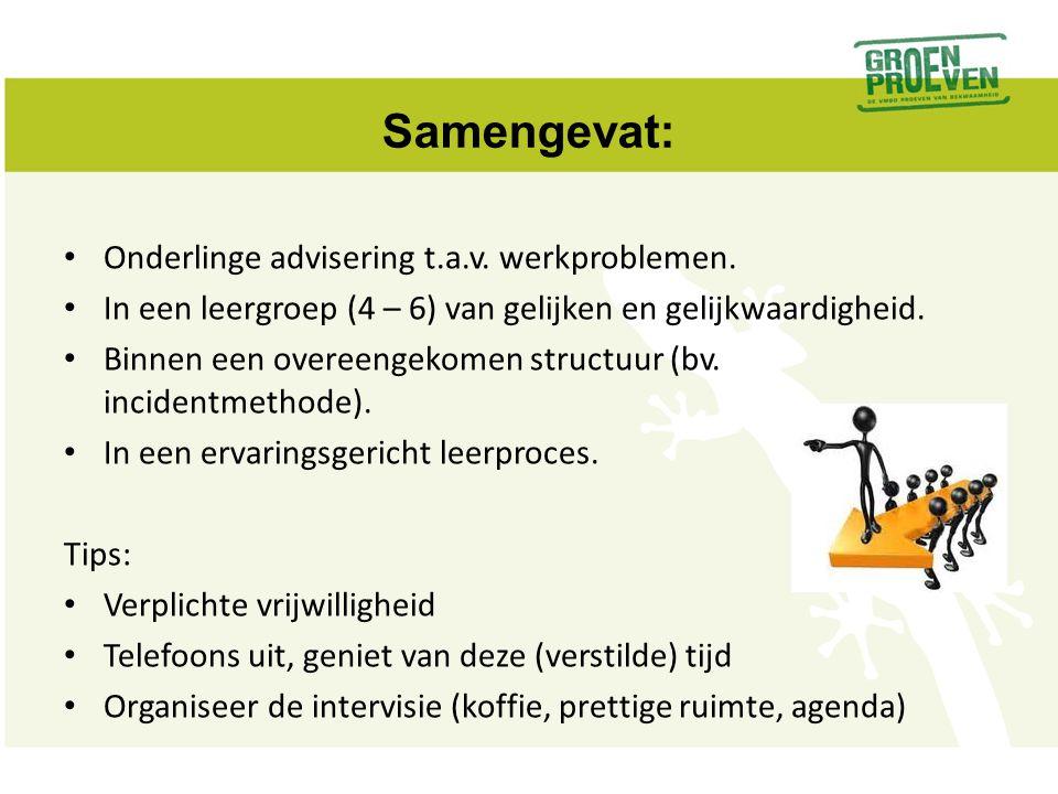 Samengevat: Onderlinge advisering t.a.v. werkproblemen.