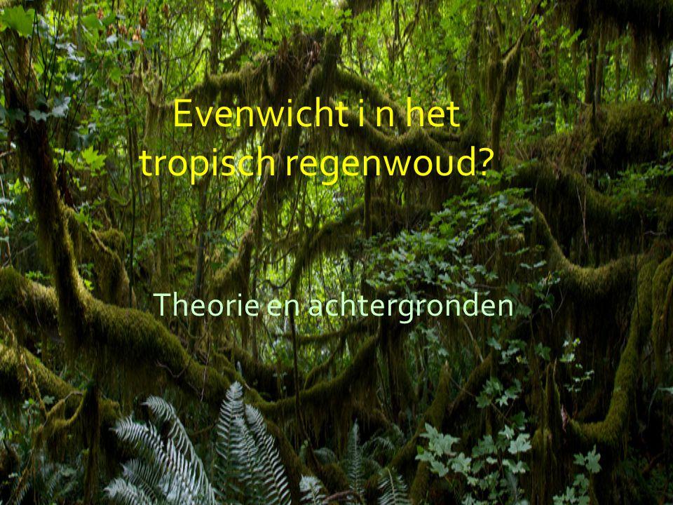 Evenwicht i n het tropisch regenwoud Theorie en achtergronden