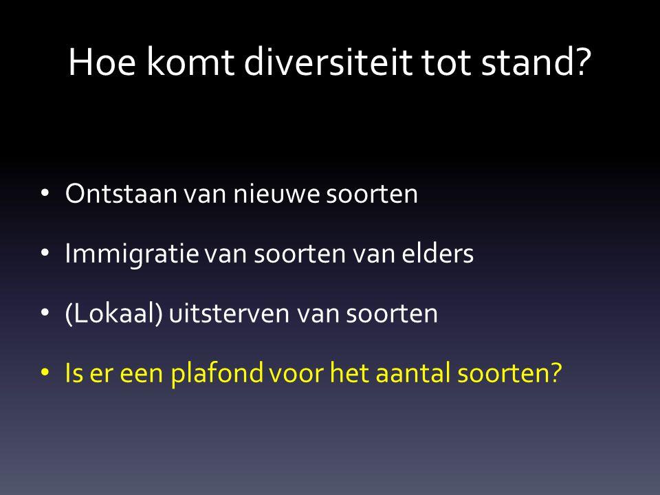 Hoe komt diversiteit tot stand