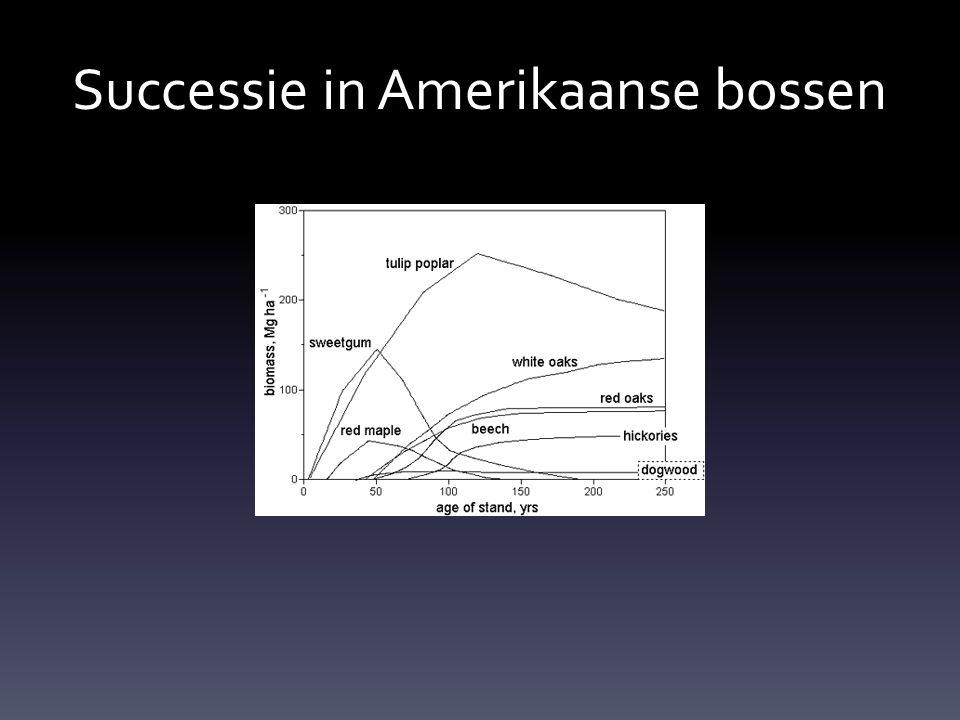 Successie in Amerikaanse bossen