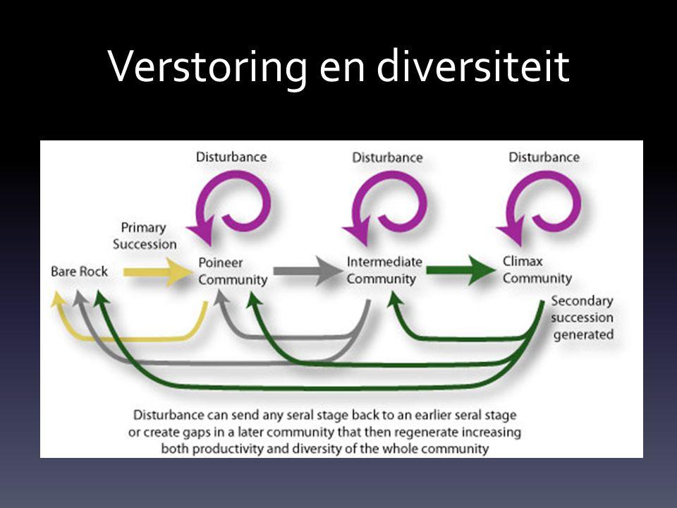 Verstoring en diversiteit