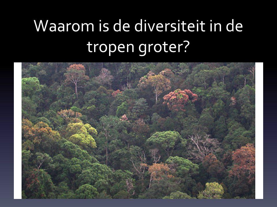 Waarom is de diversiteit in de tropen groter